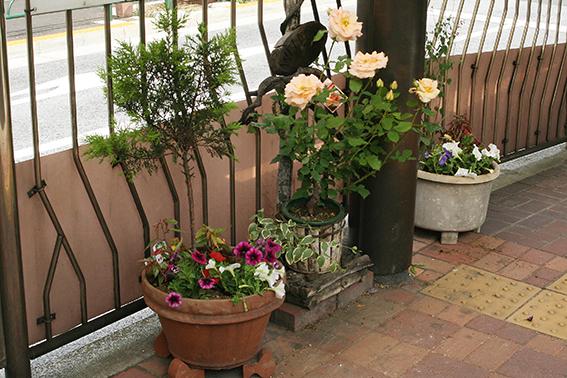 花を愛する心で 地域の人とつながる喜び