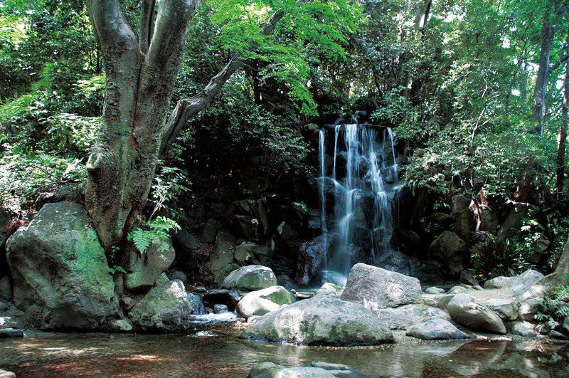 都内でも有数の落差約8mの男滝。ほかに女滝・独鈷の滝・湧玉の滝の4つの滝からなるが現在は男滝のみが稼働。