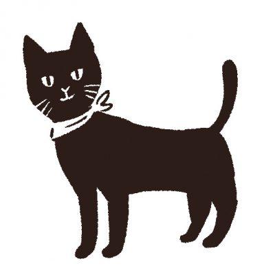 黒猫が2匹乗った ボリューム満点の猫むすび御膳